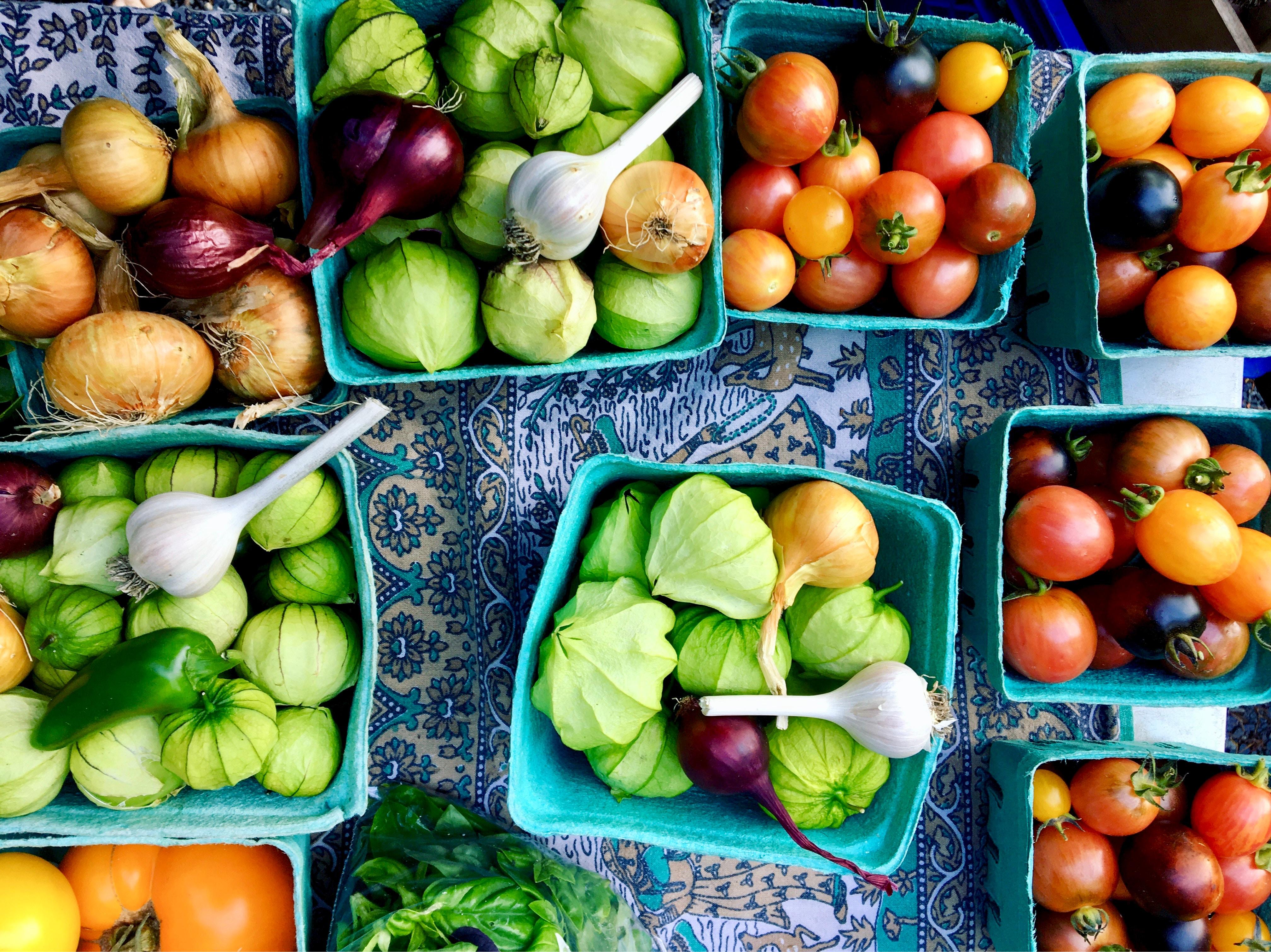 Die Vegginale in Nürnberg für Fair Goods und vegetarische Ernährung.