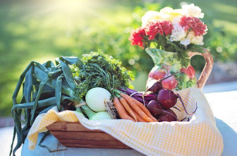 Bald gibt es vielleicht einen Online-Shop für günstige Bio-Produkte aus dem Großhandel.
