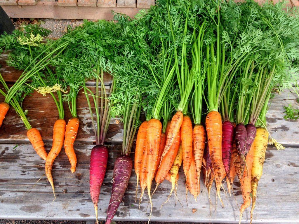 Man kann auch Gemüse selber anbauen.