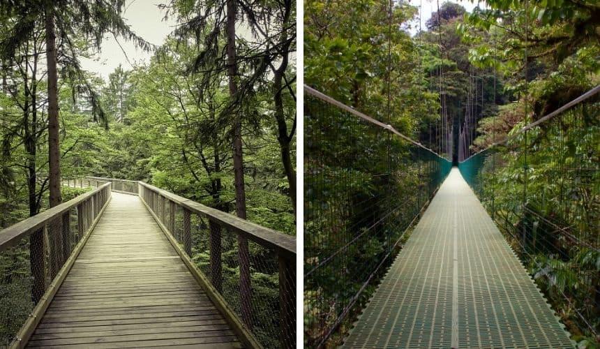 Erkennst du welcher Ort der Bayerische Wald und welcher Costa Rica ist?