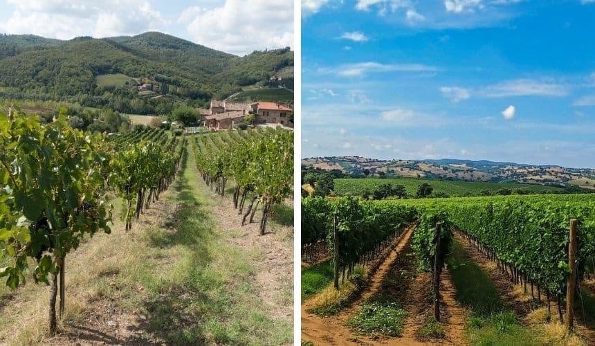 Hier sehen sich Franken und die Toskana sehr ähnlich.