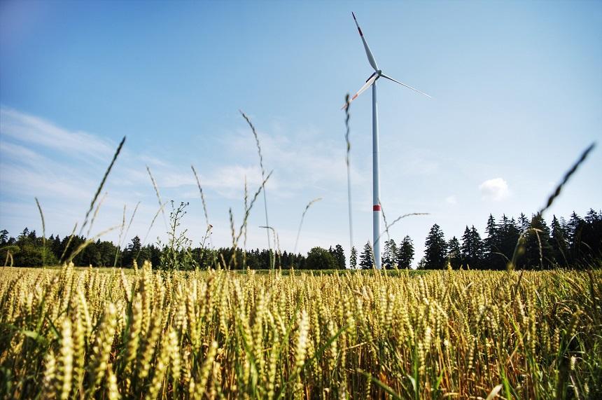 Regenerative Energiequellen wie Windkraft sind besser für die Umwelt.